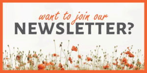 Newsletter Sidebar