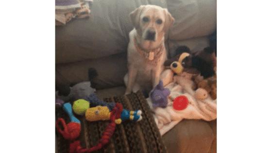 Simba Toy Overload